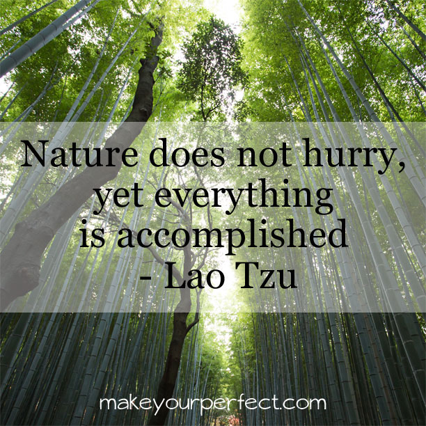 nature mindfulness quote